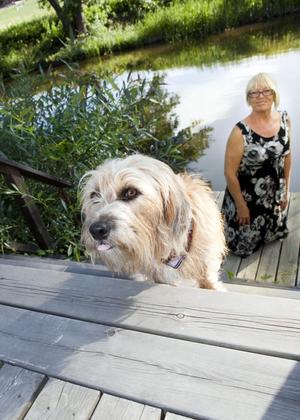 Vid ån. Alldeles vid ån har Pia sin kolonistuga där hon bor på somrarna med Selma.
