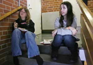 Madeleine Henriksson och Emma Nyström i åttan åker gärna på språkresa nästa år. Det är nog en väldigt härlig upplevelse, säger Emma Nyström.