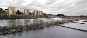 Vattnet under Renbron är en del av Bollnäsströmmarna, en bit längre upp ligger Renfallet.