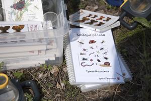 Floror och fjärilshandböcker finns till hands under guidningen.