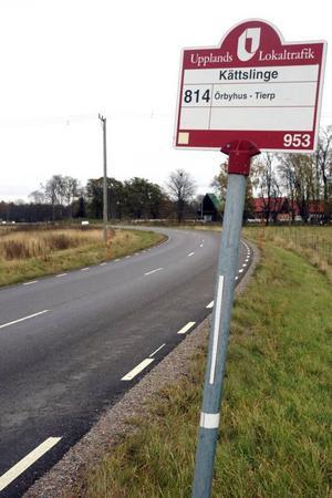 OLYCKSPLATS. Dödsolyckan inträffade på länsväg 709 i höstas.