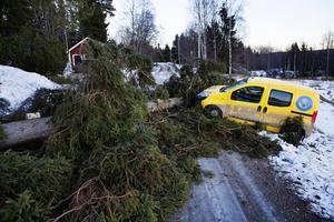 Ivar ställde till stor förödelse i december. Men något stöd från regeringen utgick inte.