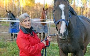 Lesley Morgan är osäker på var gränsen går för ridklubbens mark, men tycker att jägarna borde varna när de är så nära. Foto: Linnea Kallberg/DT