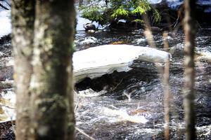 Att återställa vattendragen till sina naturliga miljöer kostar många miljoner kronor.