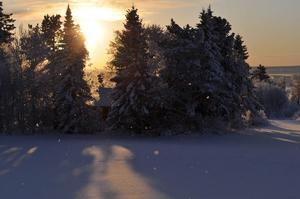 Vinterbild inärheten av Frösö kyrka Foto: Niclas Molander