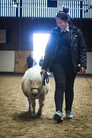 Ida Wallström hade med sig utställningens minsta häst: Luvan, 3 år, som var 76 centimeter i mankhöjd.