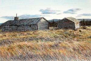 Torsten Johansson tecknar fotorealism med tusch och färgpennor.