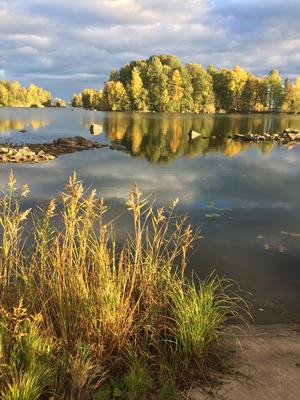 Vinnaren i oktober månads bild. Bilden är tagen i Lunger av Kerstin Malmström.