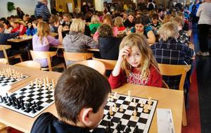 Matilda Eriksson från Grevåkersskolan funderar över nästa drag i den fullsatta Sporthallen där tioåringarna gjorde upp om att gå vidare i Schackfyran.