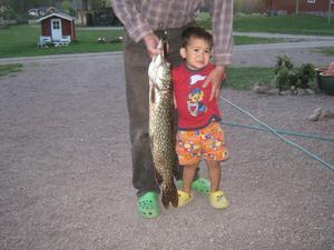 Hej jag heter Gunnar.Det pappa Jan som fånga fisk inte jag. Men pappa vill veta vem är längt? SÅ Mamma ta kort snabb jag är rädd för gäddaa.men det gick bra till slut