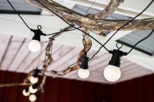 En ljusslinga har virats fast i grenarna i taket.