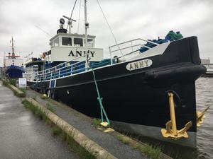 En vacker båt eller för ful för hamnen? Åsikterna går isär.