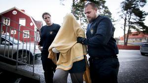 Den 20-åring som misstänks för dubbelmordet i Hälsingland innan juldagarna kan lida av en psykisk störning, visar en utredning.