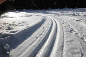 På Stafsberg håller Alfta Skogskarlar skidspår för allmänheten hela vintrarna. Någon brist på snö till söndag befarar man inte.
