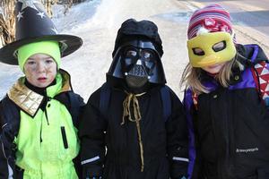 Mattis Eder, Elliot Norman och Freja Fritz hade klätt sig som trollkarl, Darth Vader från Star Wars-filmerna och anka. De hade hittills fått bland annat ljuslyktor, klubbor och hoppgrodor under sin rundvandring.