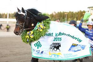 Järvsörappen segerdefilerar med Jomar Blekkan efter triumfen i Svenskt Kallblodsderby 2015.