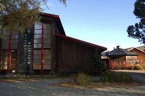 Drygt tre av tio rättvikare lånade böcker på biblioteket förra året – högst andel i Dalarna. Arkivbild.