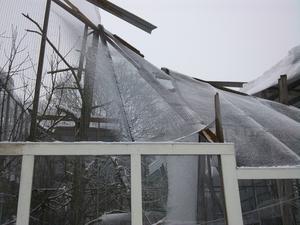 De fem meter höga voljärerna rasade samman i går.