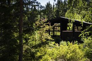 På Villa Fraxinus sker ett samspel mellan anlagd trädgård, natur och arkitektur.