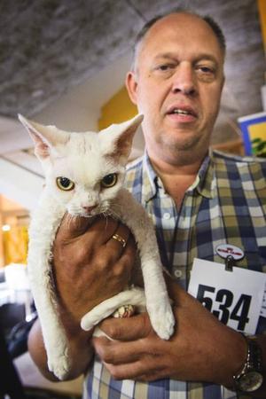 Årsundakatt. Håkan Hägglöf från Årsunda visade upp Pärlan på söndagens kattutställning.