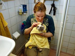 Dagens mysigaste stund är när matte, Malin Maltida, frotterar Greta torr med en tjock handduk.