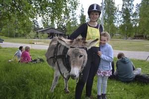 17-åriga husåsnan Rosalea deltog för första gången i brukskörning. Kusk var Emma Höglund.