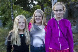 Vännerna Lova Blomberg, Sanna Ermefeldt, och Elinor Johansson hade kommit för att umgås på trivselkvälen.
