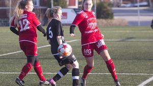 Västanfors mötte Skogsbo/Avesta i sin första träningsmatch och förlorade med 0–2