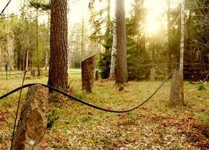 Till minne av offren. På kolerakyrkogården i stadsdelen Sundbyberg i Fagersta ligger minst elva personer begravda. Foto: Ola Wahlsten