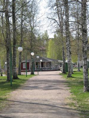 Forsparken är som klippt och skuren för att locka besökare under sommaren. Därför vill kommunen satsa pengar på campingen och badet där.
