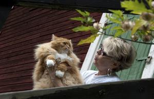Anita Jacobsson med Simba, en av husets fem katter.