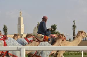 Kamelförare utanför vid Dubai Camel Racing Club. Tävlingar med kameler är Dubais nationalsport.