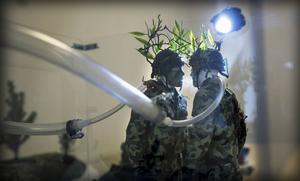 Installation med gränsvakter och dimma.