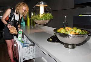 Köket om 15 år. För att spara på energi och för att slänga mindre mat är kyl och frysar mindre. Inköp levereras regelbundet till trapphusets mat- och brevlåda. Väggarna är klädda med skivor som döljer sladdar och teknik. Lampan sprider dagsljus som får kryddorna att trivas och rummets mitt att lysas upp.