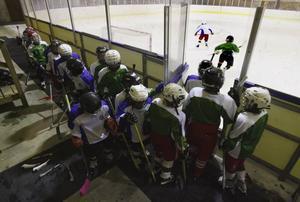 Ungdomstränarna börjar tappa tålamodet. Många vill vara med och spela, men isytorna räcker inte till för alla.