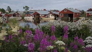 Prästgrundet i Söderhamns skärgård.
