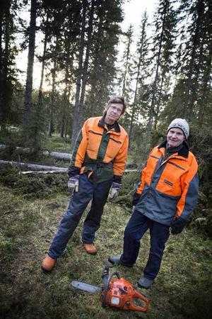 Bröderna Håkan och Göran Espmark möttes av många vindfällda träd sedan stormen Hilde dragit fram.– Jag har aldrig varit med om något liknande i hela mitt liv, säger Göran Espmark.