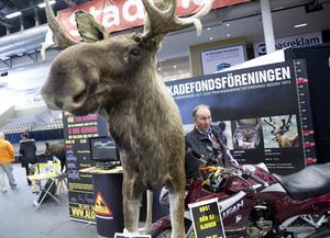 """""""Kör försiktigt!"""" I ett hörn fanns Boris Karlqvist från Älg-skadefondföreningen. Här visar han hur stor en älg är jämfört med en motorcyklist, som bara når upp till älgens mage."""