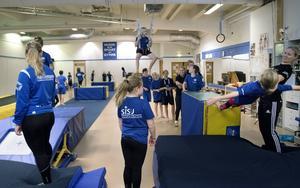 Många tog chansen att pröva gymnastik och judo på sportholmen.