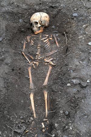 17 skelett har återfunnits hela, som detta i det översta av tre skikt. Bilden är från början av september när utgrävningen nyss hade påbörjats.