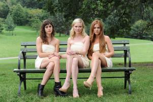 Lizzy Caplan, Kirsten Dunst och Isla Fisher spelar gamla high school-kompisar som ska fira bröllop. Ett tajt gäng då men på senare tid är livet inte lika kul längre.