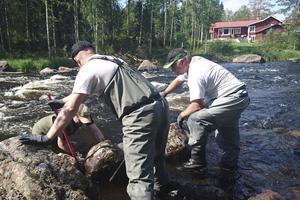 – Vattnet kommer inte bli återställt under vår livstid, men varje sten vi rullar ut är kvar för evigt, säger Andreas Persson. Här tillsammans med Fredrik Modin och Stefan Åkesson.