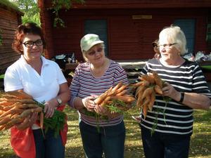 Grönsakerna från Ramsele-Edsele trädgårdsamatörer hade en strykande åtgång. Eva Carlsson, Maj-Liss Wallin och Naima Eliasson visar.