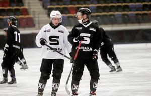 Erik Säfström, till höger, tillsammans med Sandvikens andra storvärvning Daniel Berlin.