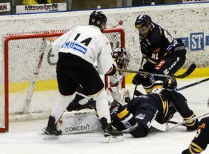Sundsvall Hockey och Asplöven stöter på varandra två gånger i Hockeyettan Norras grundserie innan jul.