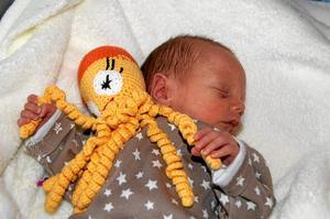 Bläckfiskkompis. Lilla Molly är en av många för tidigt födda bebisar som fått en bläckfisk. Henne mamma mailade den här bilden till Jeanette Birkholm på bloggen Babydjungel och berättade att de blivit så glada över att få bläckfisken.