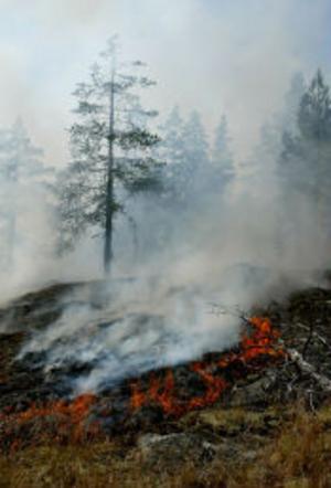 Släckningsarbetet tog tid och försvårades av bristen på vatten i närheten av branden.
