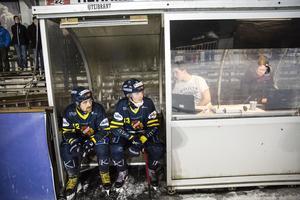 Falu BS Bandy. Gripen. Bandy. Jesper Hvornum. Axel Jansson.