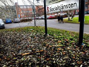 Socialsekreterare i Sundsvall får förkortad arbetsdag, men i Umeå ökade sjukfrånvaron samtidigt som ett liknande försök i äldreomsorgen pågick.