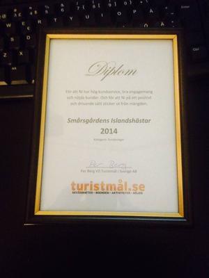 Diplom för utmärkelsen som årets turistmål i kategorin turridningar.